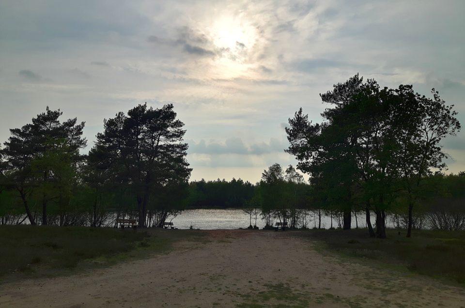 Lüneburger Heide und Celle
