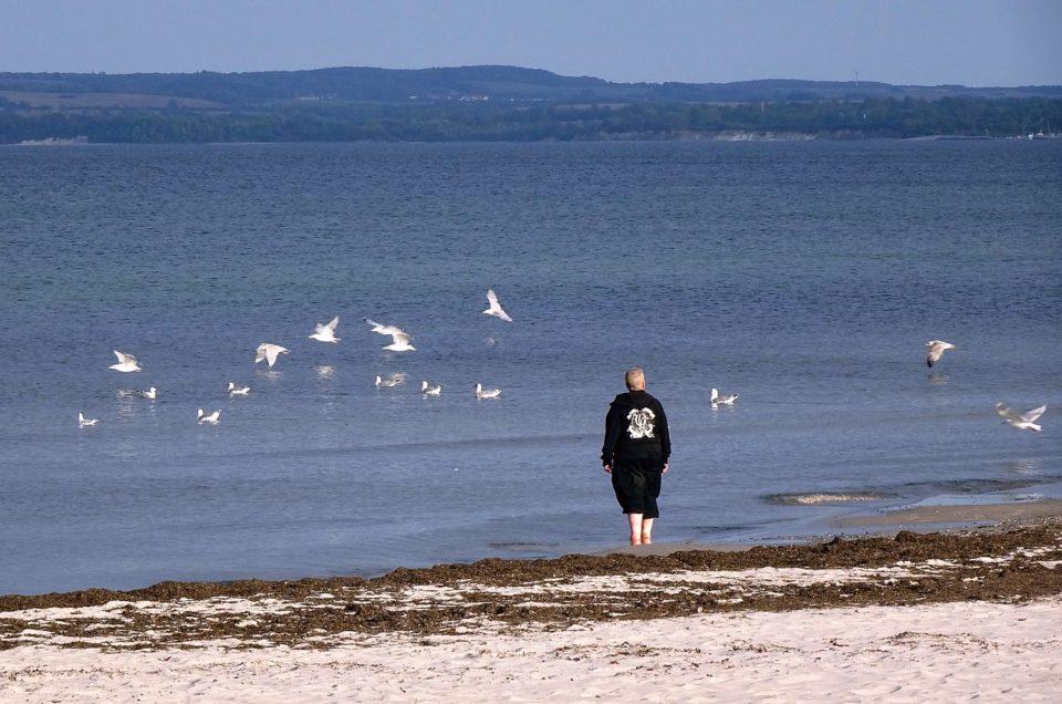 Zweimal Open Air: Insel Rügens beste Seite